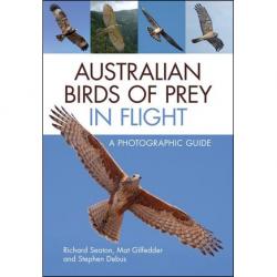Australian Birds of Prey in Flight