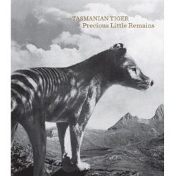 Tasmanian Tiger Precious Little Remains